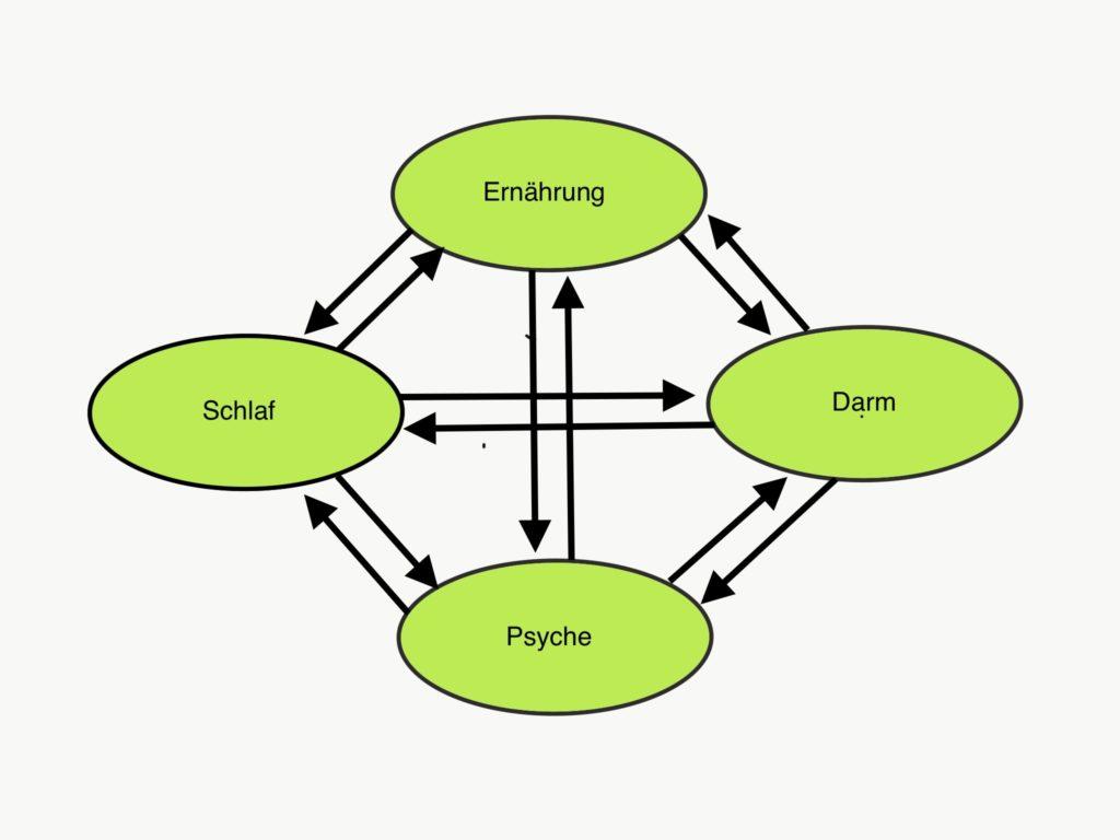 Schema Wechselbeziehungen zwischen Schlaf, Darm, Ernährung und Psyche