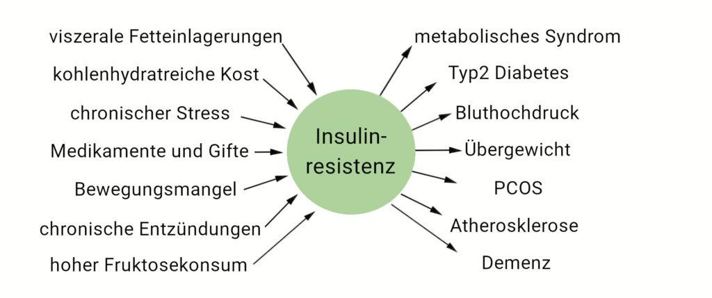 Schema zu Ursachen und Folgen der Insulinresistenz